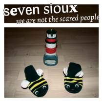 <p><strong>SEVEN SIOUX</strong><br /> CD: We are not the scared people<br /> Fettkakao Records, 2006</p>